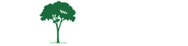 Able Tree Surgeons Huddersfield, Holmfirth